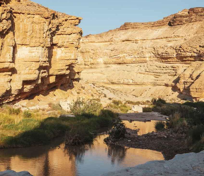 Formação de rocha marrom às margens d'água de pequeno rio, durante o dia, em Negev