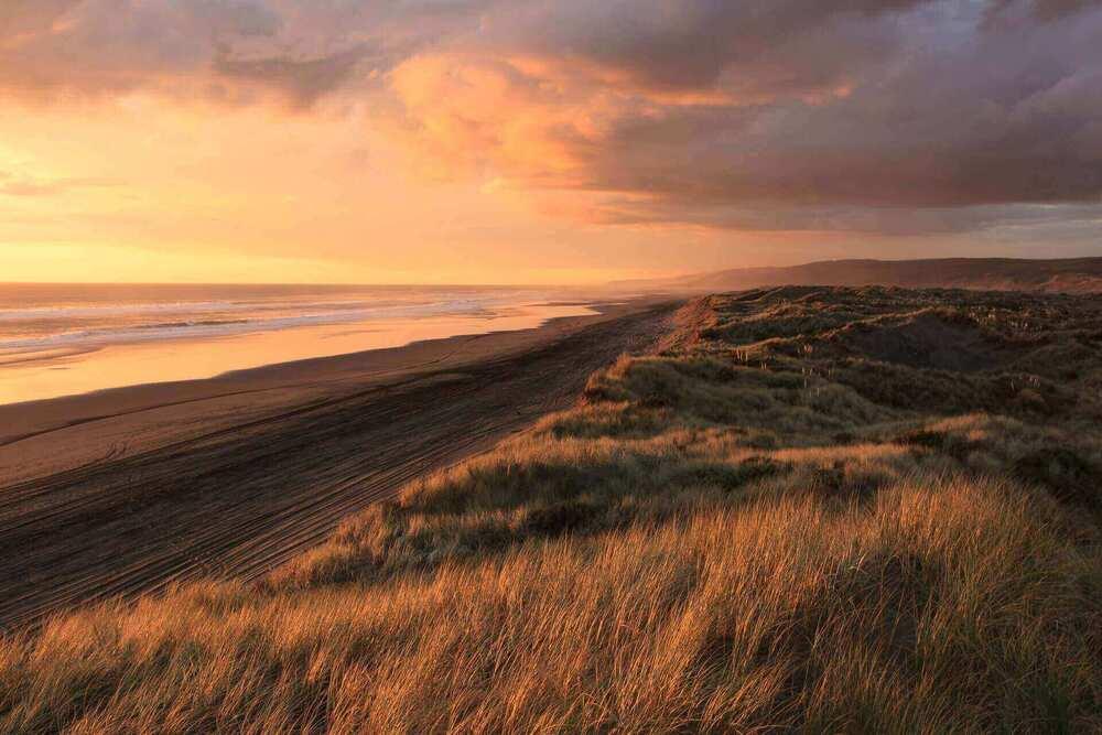 Nascer do sol em praia na Nova Zelândia