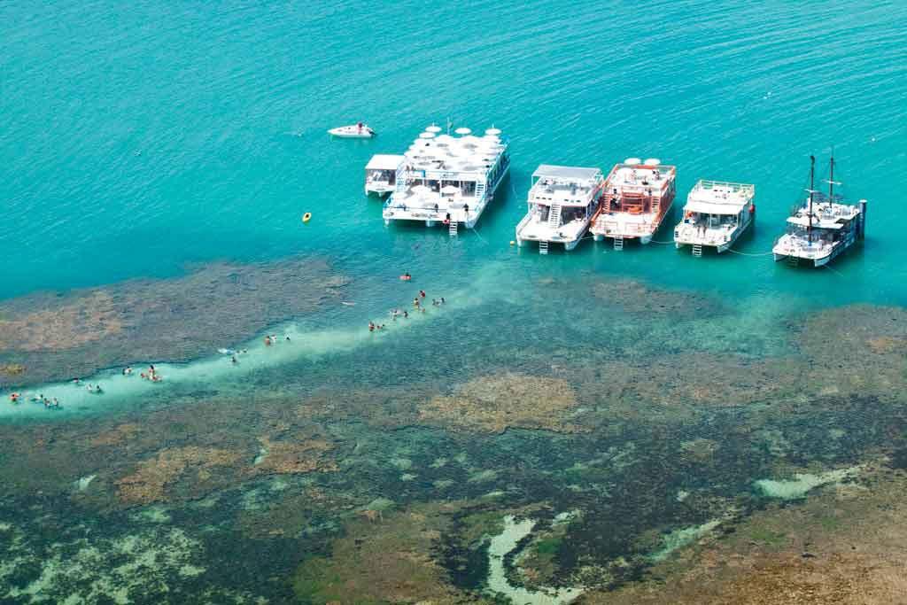 viajantes nadam perto de catamarãs em Piscinas Naturais de Picãozinho uma das melhores atrações entre muito o que fazer em João Pessoa