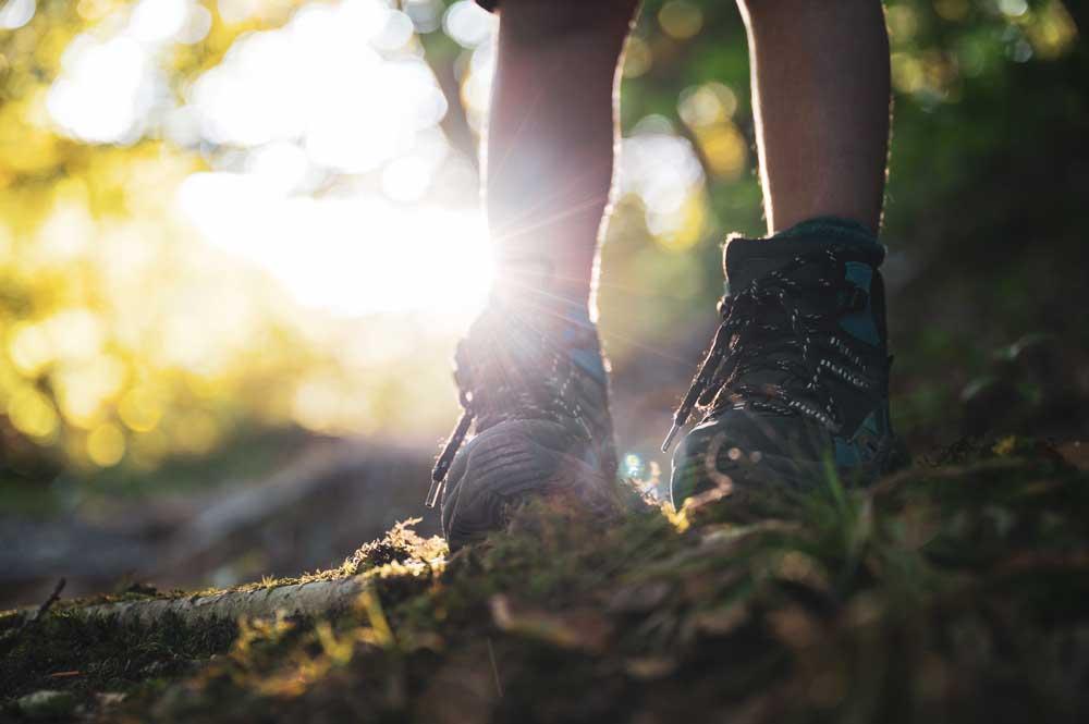 viajante caminhando em trilha