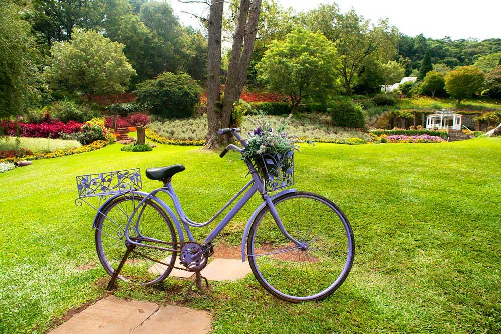 Bicicleta com flores em Parque olivas em Gramado