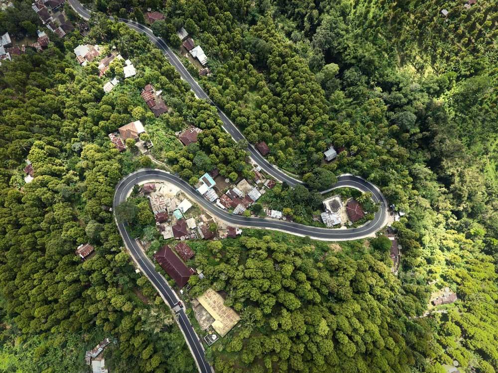 vista aérea floresta ao redor de estrada