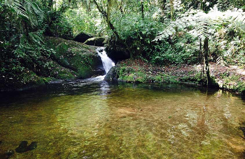 Poção de cachoeira em Sítio Cachoeiras do Alcantilado, um dos melhores atrativos entre muito o que fazer em Visconde de Mauá