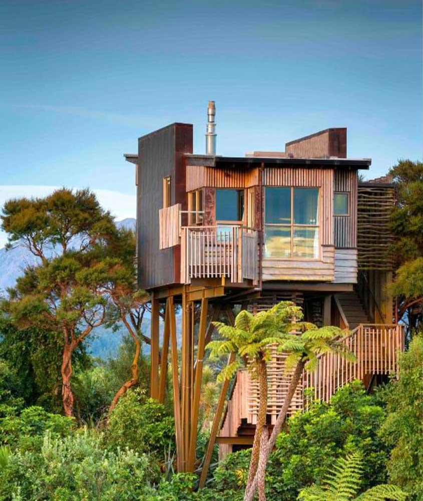 casa em cima de árvores na nova Zelândia