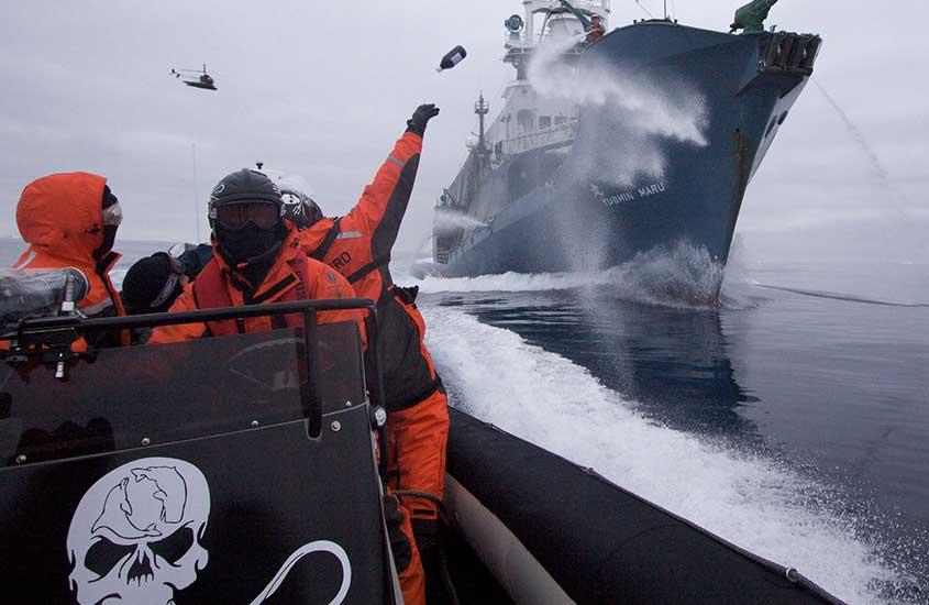 Voluntários em barco de Corpo da Paz, uma organização onde é possível ganhar dinheiro viajando