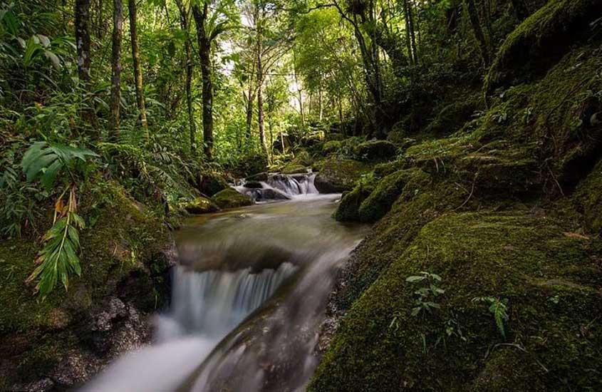 Queda d'água de cachoeira no Parque Ecológico Cachoeiras do Santuário, uma das opções de passeio no turismo na Serra da Mantiqueira