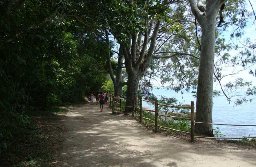 pessoas caminham durante o dia em Circuito Abraão, uma trilha para quem busca o que fazer de graça em Ilha Grande