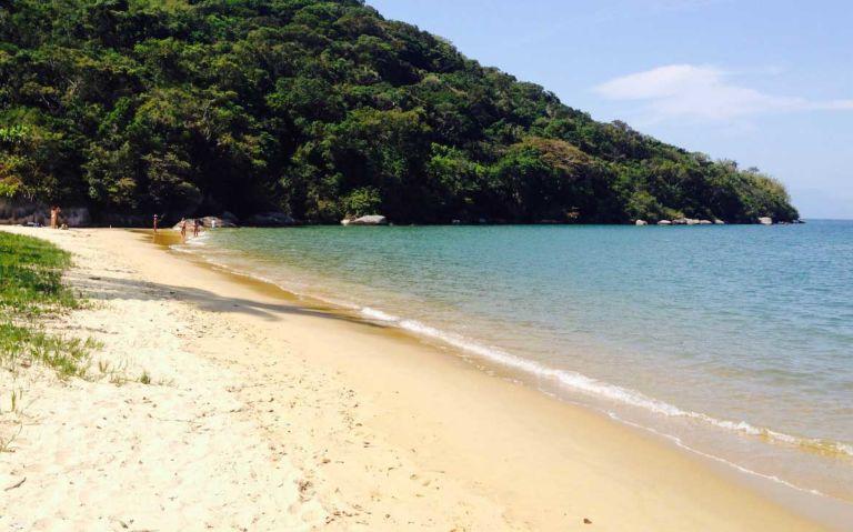 praia vazia, durante o dia, em Ilha Grande