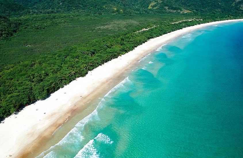 vista aérea de mar azul e vegetação de Enseada de Palmas em Ilha Grande
