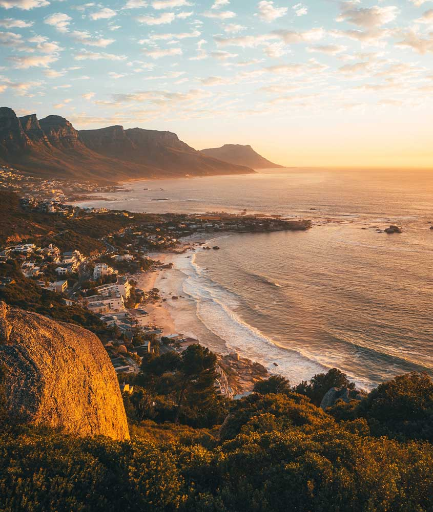 vista aérea de mar e árvores em África do Sul