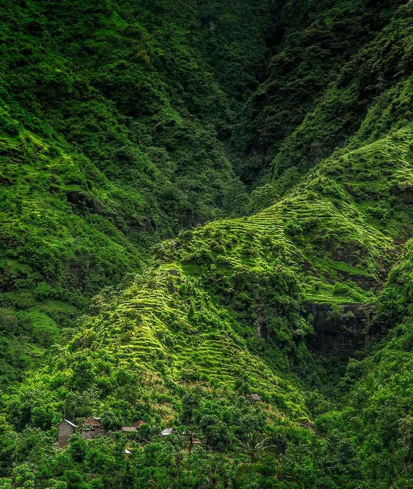 montanha verde. Uma das curiosidades sobre a Indonésia é que ela é um dos países mais verdes do mundo