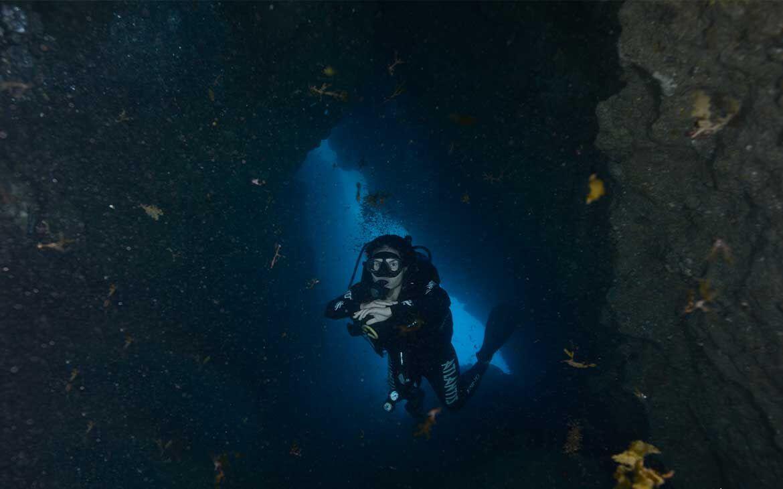 Descubra os 12 melhores lugares para mergulhar no mundo