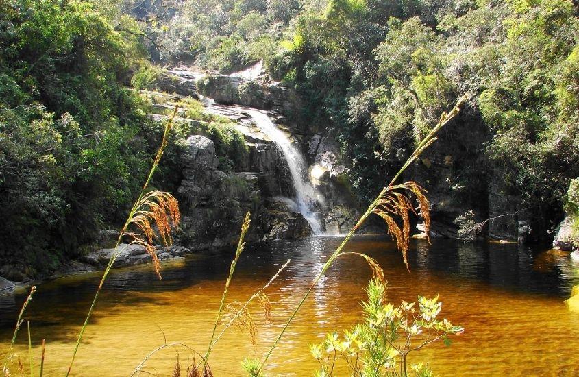 queda d'água de cachoeira cercada de árvores que é uma atração interessante para quem está buscando o que fazer em Macacos MG