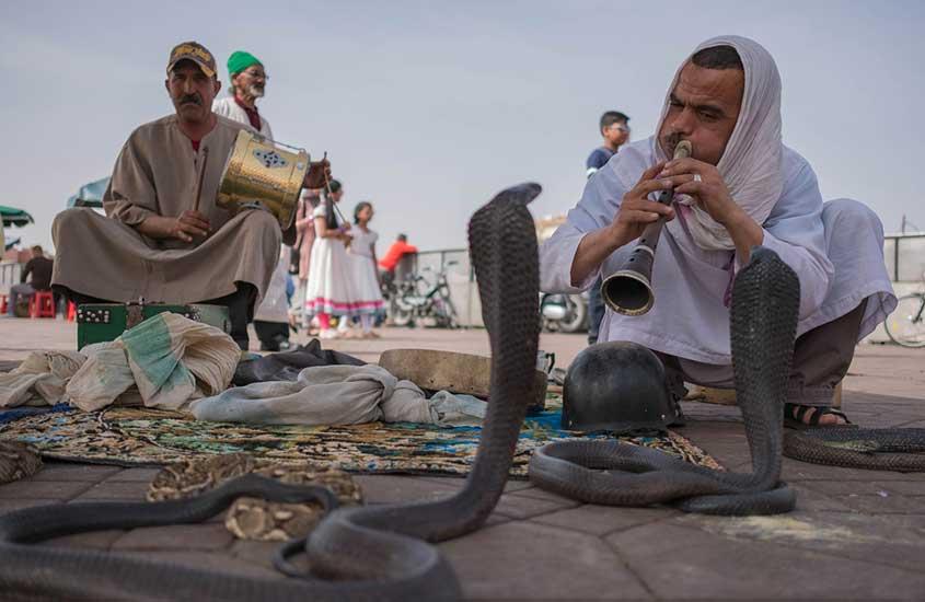 Homens encantam serpente em Marrakesh, uma das curiosidades do Marrocos é que há muitos encantadores de serpentes