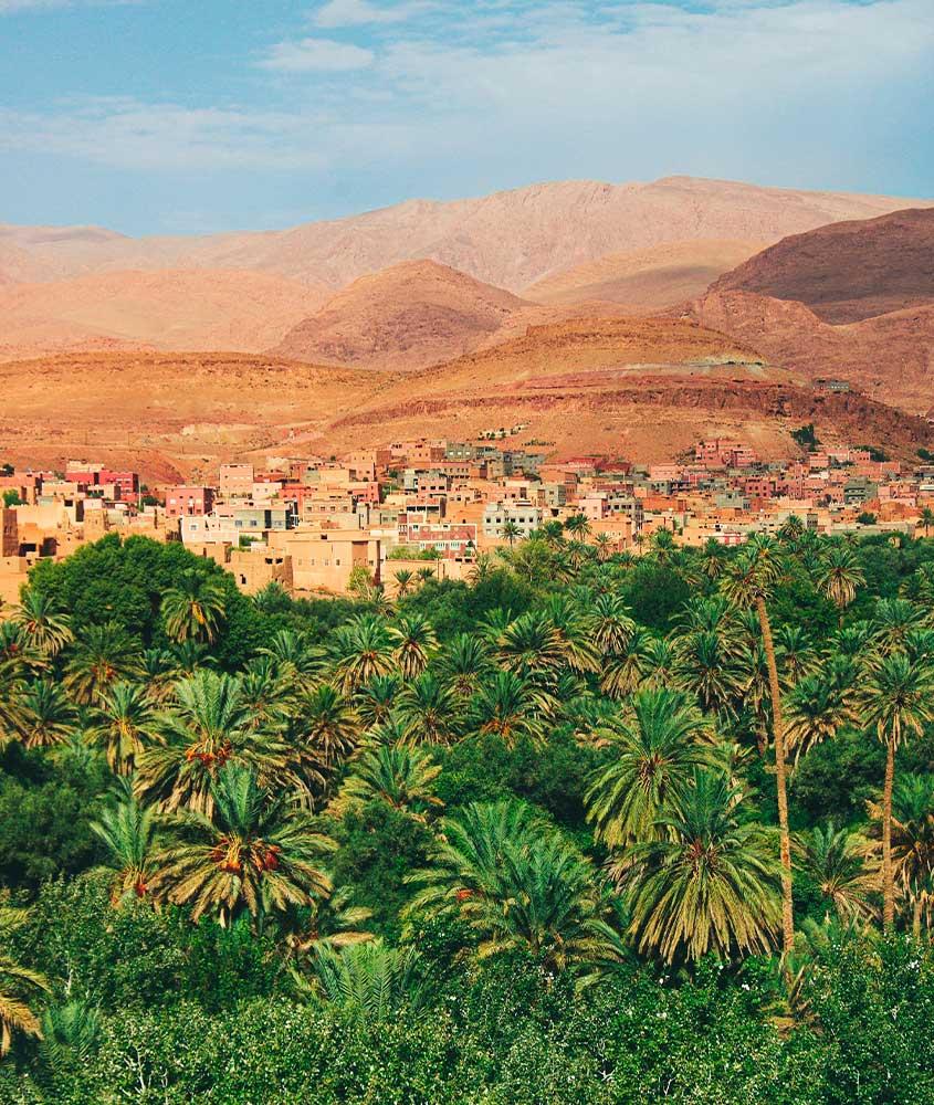 vista aérea de árvores, casas e montanhas em Marrocos