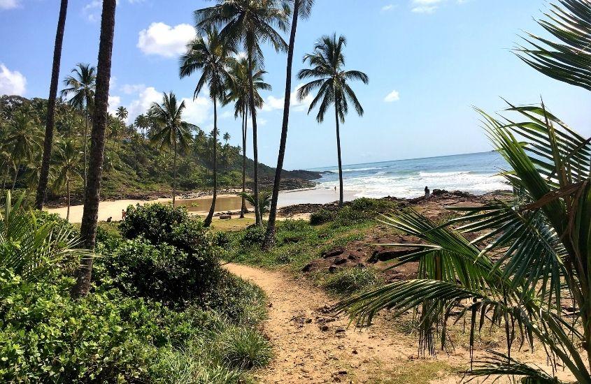 areia, coqueiros e mar durante o dia em Itacaré na Bahia