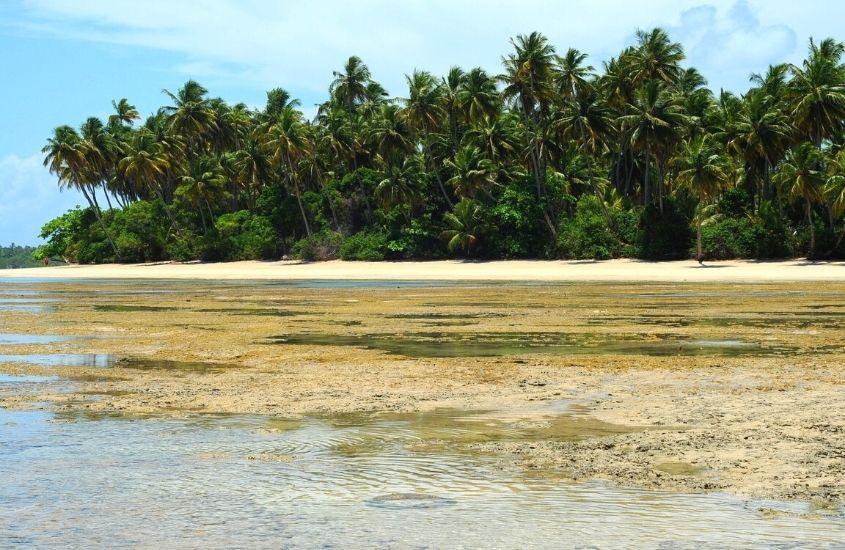 mar, areia e coqueiros em Praia da Boca da Barra, uma opção para quem busca o que fazer em Boipeba