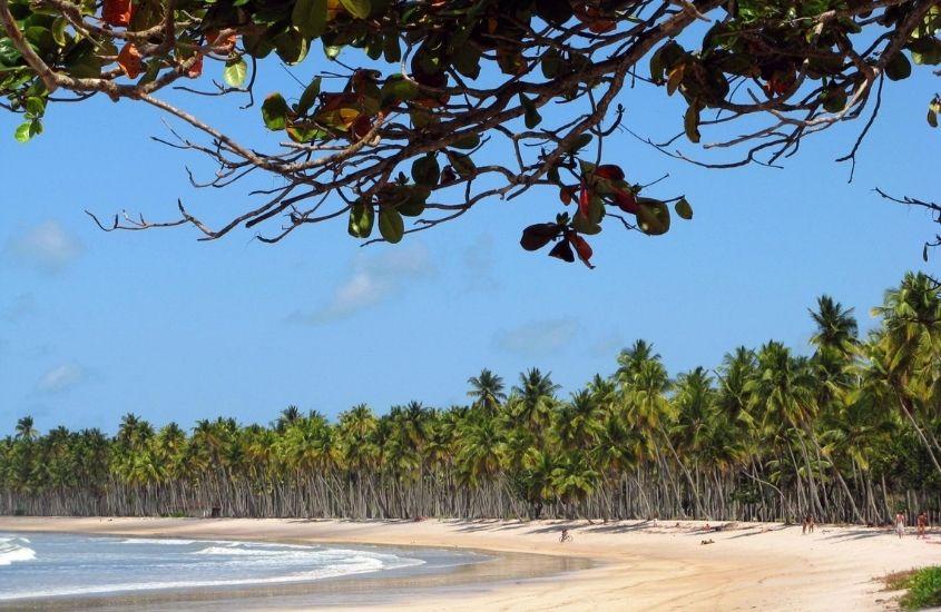 mar, areia e coqueiros em praia da cueira, uma opção para quem busca o que fazer em Boipeba