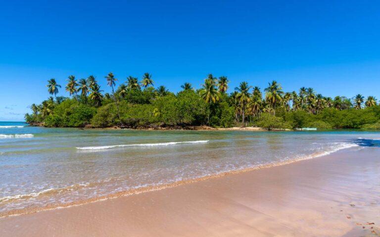mar, areia e vegetação em dia ensolarado em Praia em Boipeba