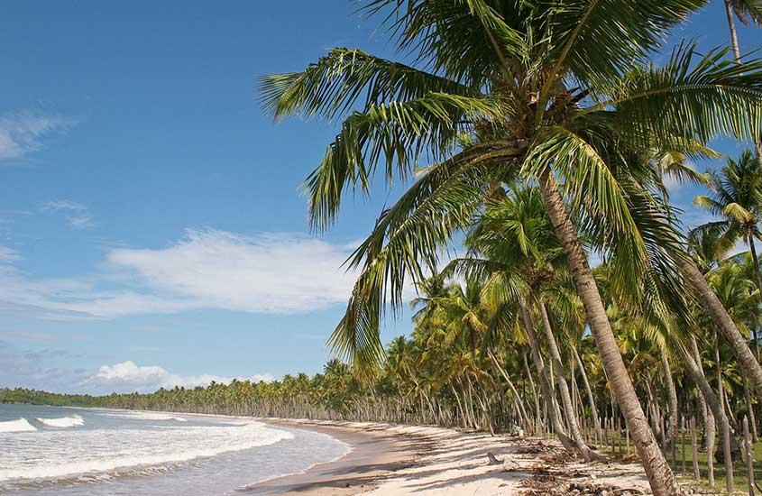 mar, areia e coqueiros em Tinharé, local próximo a morro de Sao Paulo