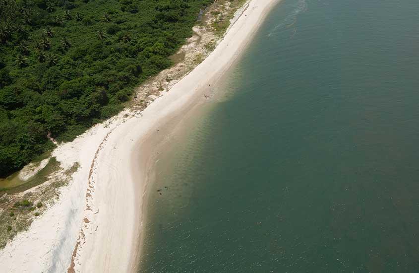 vista aérea de vegetação, areia e mar em morro de são Paulo, durante o dia