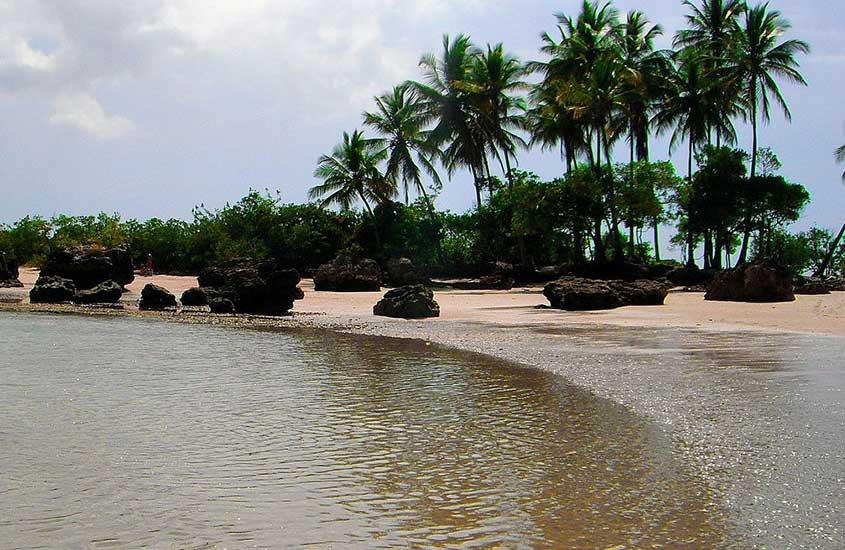 mar, areia e coqueiros de Segunda Praia, um bom lugar para visitar por quem busca o que fazer em morro de Sao Paulo