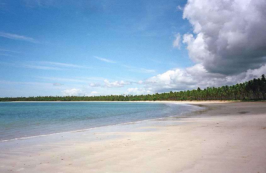 mar, areia vazia e árvores de Terceira Praia, um lugar para quem busca o que fazer em morro de são Paulo