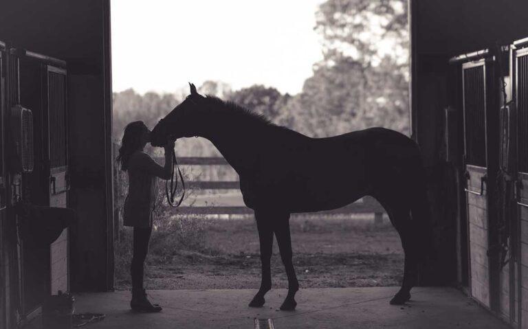 mulher beijando cavalo em haras em vargem grande
