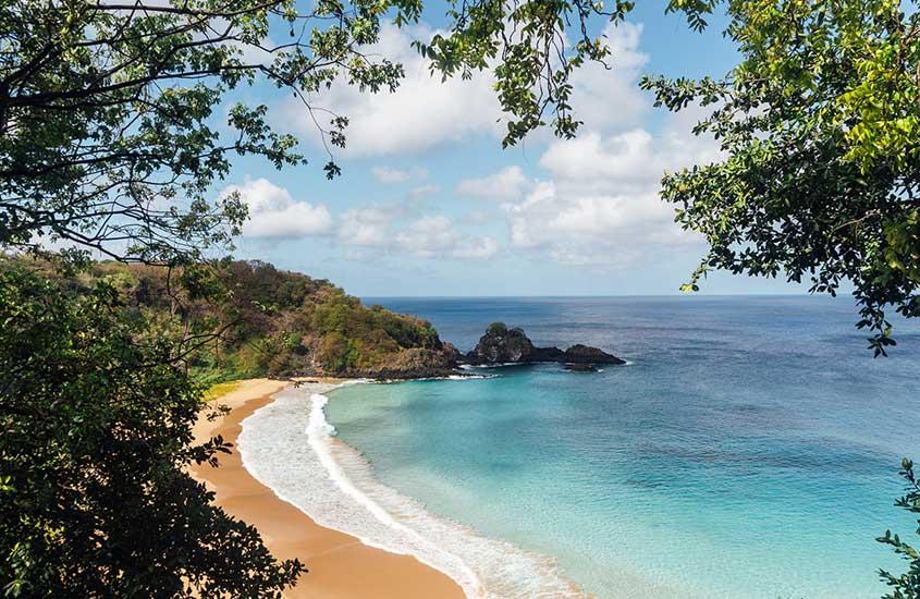 árvores, areia e mar de Praia em Fernando de Noronha, um ótimo lugar para viagem pelo litoral brasileiro