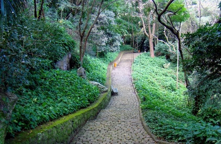 caminho de pedras cercado de árvores em Catacumba, um dos parques do rio de janeiro