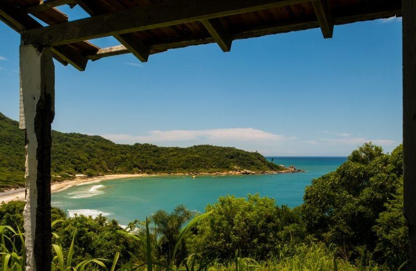 mar, areia e árvores durante o dia em Florianópolis, um ótimo lugar para viagem pelo litoral brasileiro